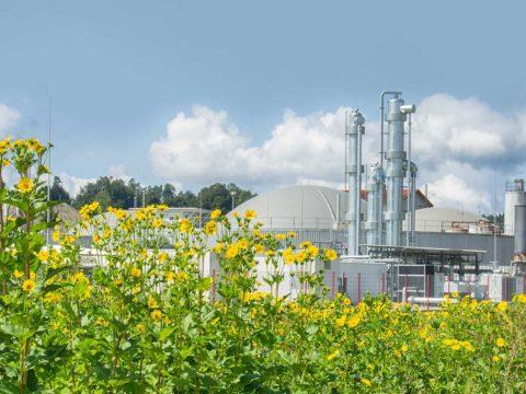 Biogas Energiepark
