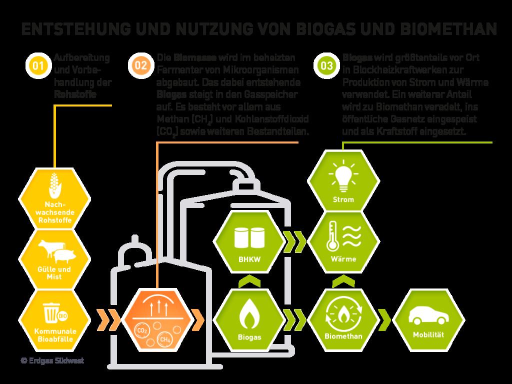 Infografik: Herstellung von Biogas