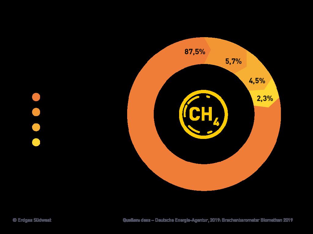 Grafik Verwendung von Biomethan