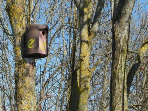 Nistkasten der Erdgas Südwest am Baum