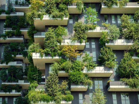 Begrünte Fassade klimaschonendes Gebäude