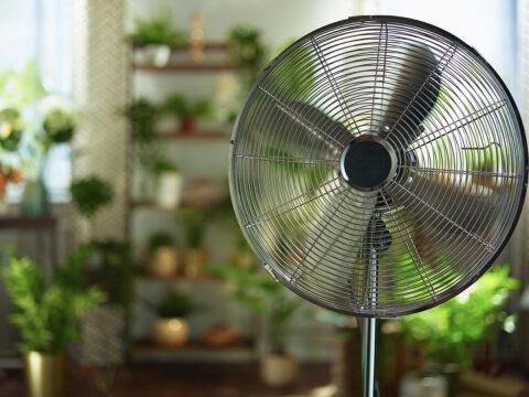 Standventilator statt Klimaanlage